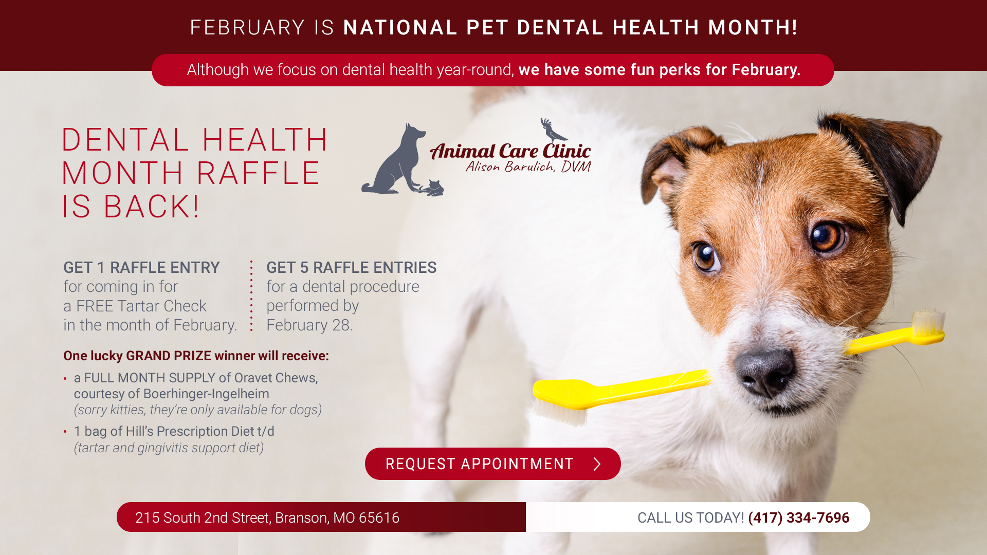 February is Pet Dental Health Month!